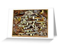 """Even Fungi has it's use"""" Greeting Card"""