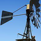 Koala On A Windmill by AngieBel