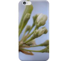 Prelude to the Pops iPhone Case/Skin