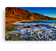 """""""Cathedral Rock Beach"""" Canvas Print"""