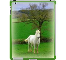 Hello! iPad Case/Skin