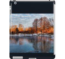 Cold Ice, Warm Light – Lake Ontario Impressions iPad Case/Skin