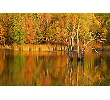 Teeter Pond, Finger Lakes National Forest, Hector, NY, USA Photographic Print