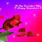 To My Beautiful Wife... by Ilunia Felczer