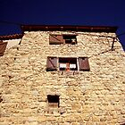 Old stone house by daffodil