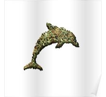 Drug Dolphin Poster