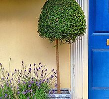 By the blue door by Sue Purveur