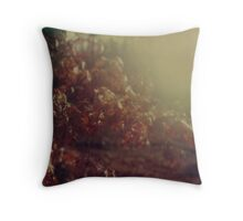 #002 Throw Pillow