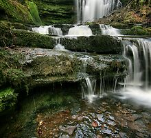 Scaleber Force by Angie Latham