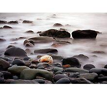 Waters edge  Photographic Print