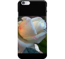 Frosted white rose 4 iPhone Case/Skin