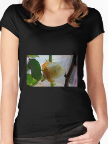 Fading white rose Women's Fitted Scoop T-Shirt