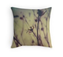 #006 Throw Pillow