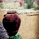 Spring In A Pastel Garden - Infrared Series  by Jane Neill-Hancock