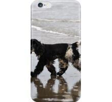 English Cocker Spaniel on the Beach iPhone Case/Skin