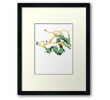Owain's Mega Rayquaza (No outline) Framed Print