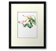 Owain's Deoxys (No outline on streams) Framed Print