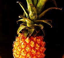 ANANAS COMOSUS alias pineapple - 1479 viewings by bubblehex08
