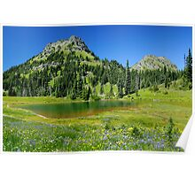 Summer at Chinook Pass - Mt. Rainier N. P. Poster