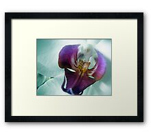 Orchid's mask Framed Print