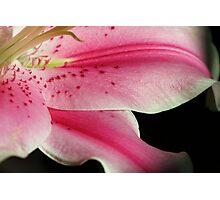~Lily's Secret~ Photographic Print