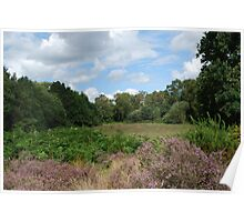 Hartlebury Common, Worcestershire Poster