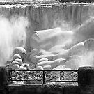 Niagara Falls in Winter by yvonne willemsen
