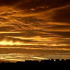 Downpatrick Skyline by Alan McMorris
