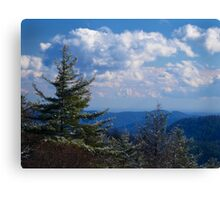 Sky Valley Canvas Print
