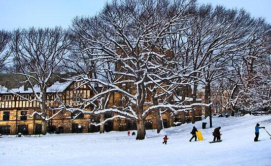 Winter can be fun by LudaNayvelt
