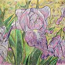 Purple Irises by Alexandra Felgate