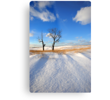 A Beautiful Winter's Day Metal Print