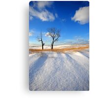 A Beautiful Winter's Day Canvas Print