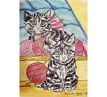 Tabby Kittens II Photographic Print