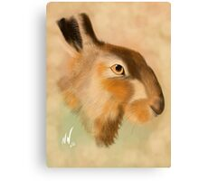 British Brown Hare Canvas Print
