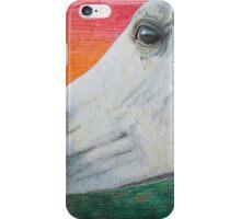 """Arabian Colors"" - Arabian stallion iPhone Case/Skin"