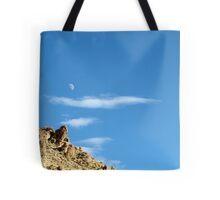 moonset. ladakh, north west india Tote Bag