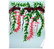 Wisteria on branch Poster
