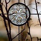 Six Glass Petals by Pamela Hubbard