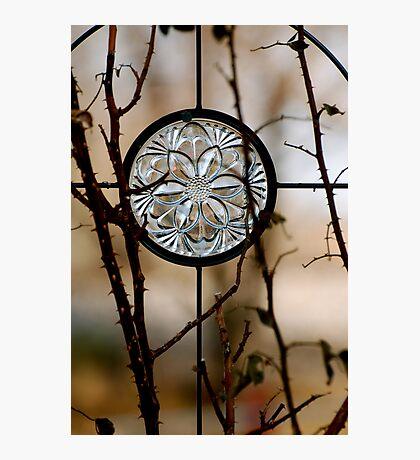 Six Glass Petals Photographic Print