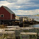 Peggy's cove by Roxane Bay
