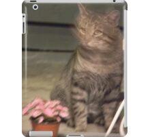 NO CAT FOOD? Surely you jest..... iPad Case/Skin
