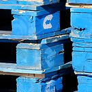 Blue Pallets by Pamela Hubbard