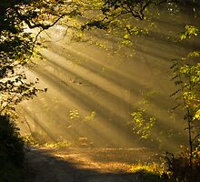 sunbeams at hebden bridge by jimmyh