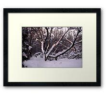 A Snowy Scene Framed Print