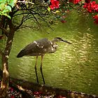 The Blue Heron by Vickie Emms