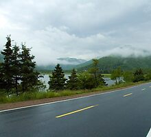 Nova Scotia Highway by Roxane Bay