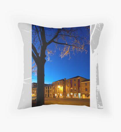 Salamanca Throw Pillow