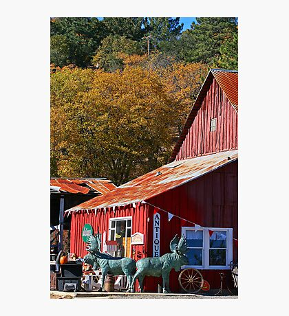 ramona farm Photographic Print