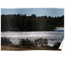 ramona lake Poster